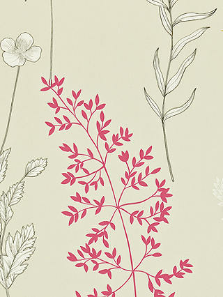 Buy Sanderson Summer Meadow Paste the Wall Wallpaper, DMAD212860 Online at johnlewis.com