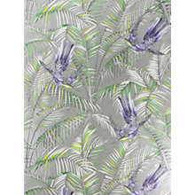 Buy Matthew Williamson Sunbird Wallpaper Online at johnlewis.com
