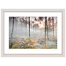 Buy Mike Shepherd - Woodland Scene Framed Print, 81 x 107cm Online at johnlewis.com