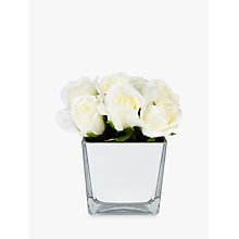 Buy Peony Artificial Roses In Glass Cube, White Online at johnlewis.com