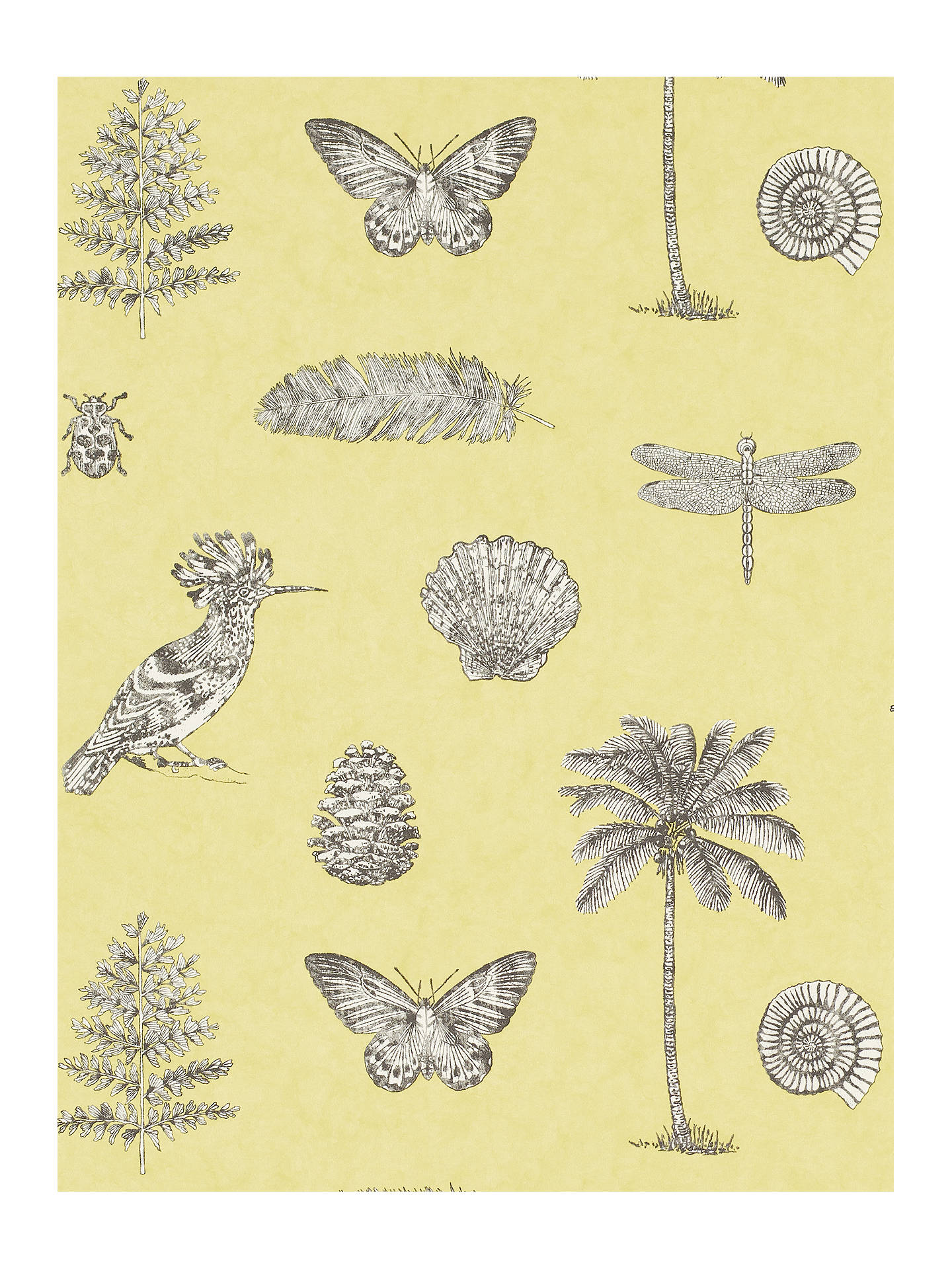 BuySanderson Cocos Wallpaper, Yellow/Charcoal, DVOY213382 Online at johnlewis.com