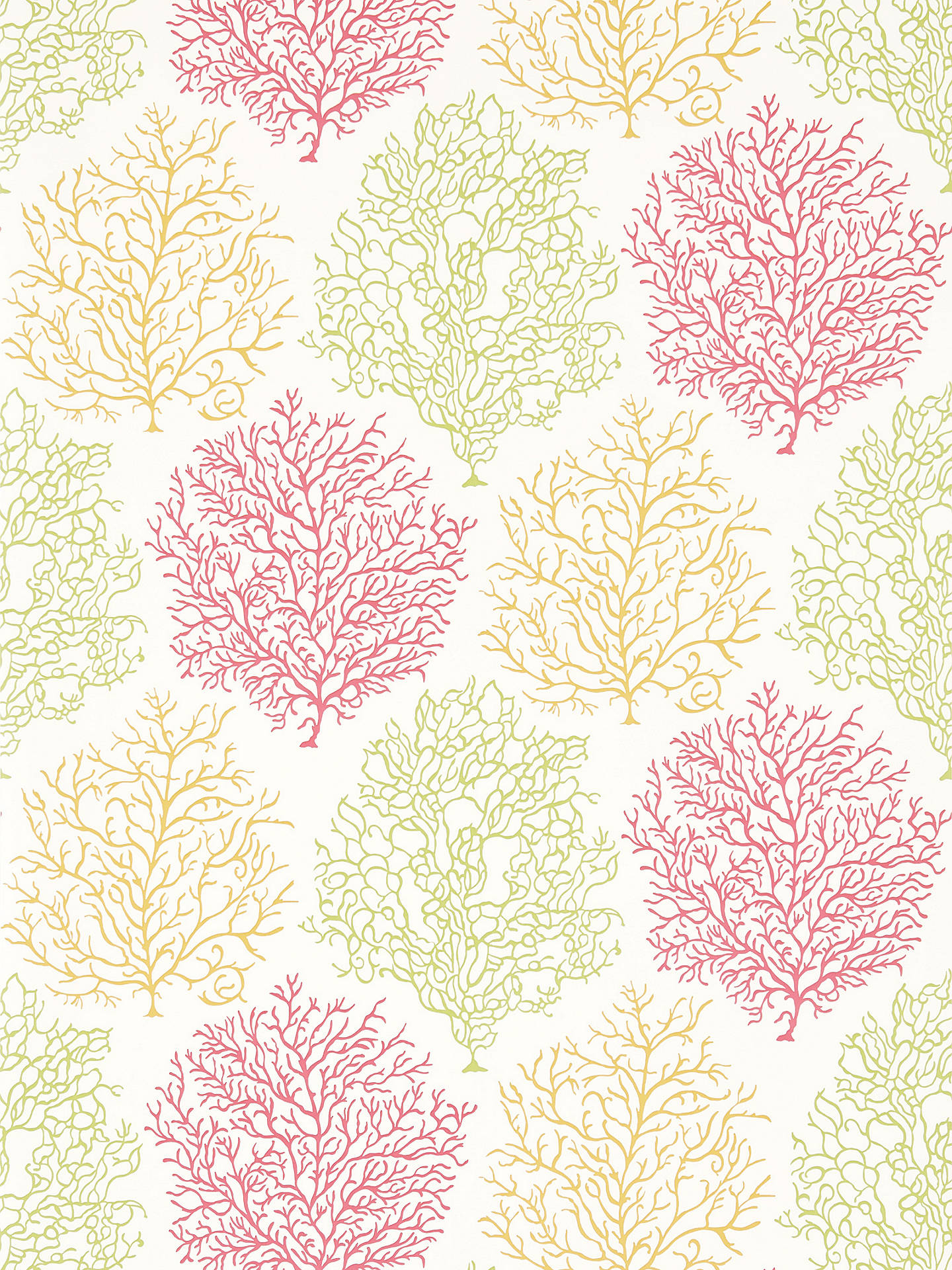 BuySanderson Coral Reef Wallpaper, Tropical/Brights, DVOY213391 Online at johnlewis.com