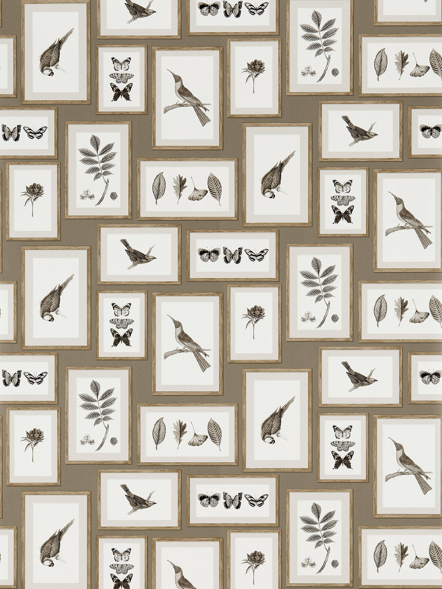 Buy Sanderson Picture Gallery Wallpaper, Taupe/Sepia, DVOY213397 Online at johnlewis.com