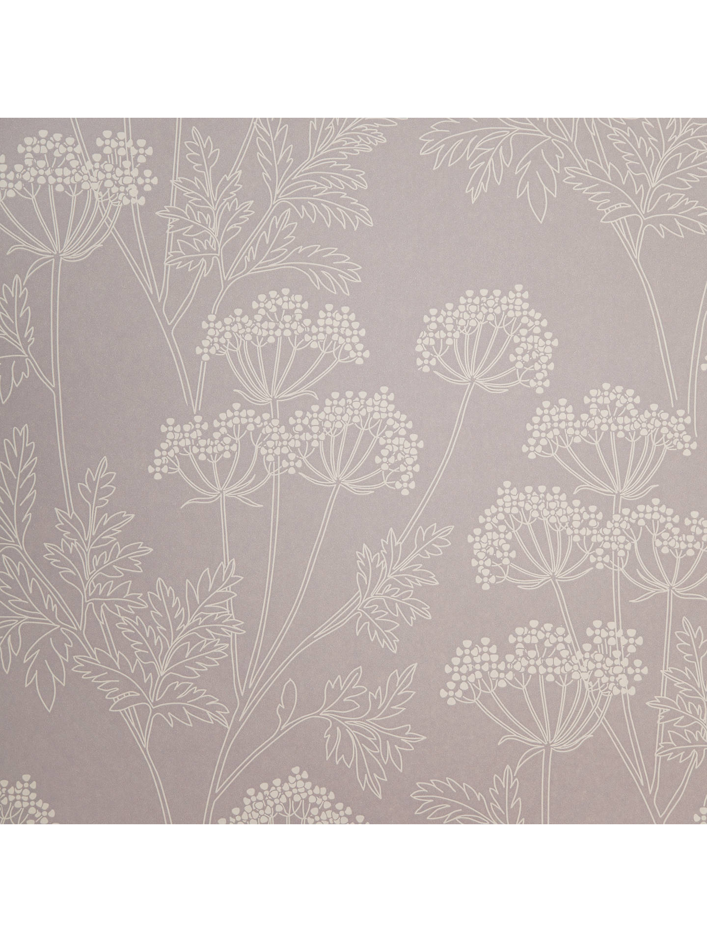 Buy John Lewis & Partners Cow Parsley Wallpaper, Cassis Online at johnlewis.com