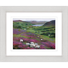 Buy Debbie Neill - Heather Sheep Framed Print, 47 x 57cm Online at johnlewis.com