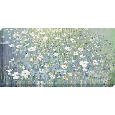 Catherine Stephenson – Hazy Daisies Print on Canvas, 60 x 120cm