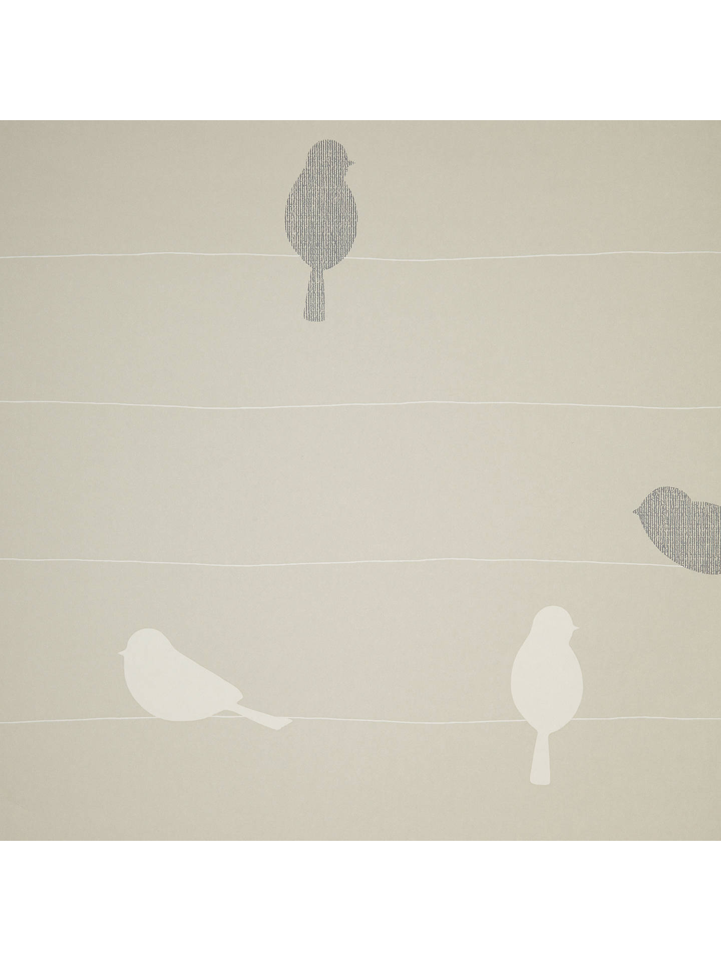 John Lewis Bird On A Wire Wallpaper At John Lewis Partners