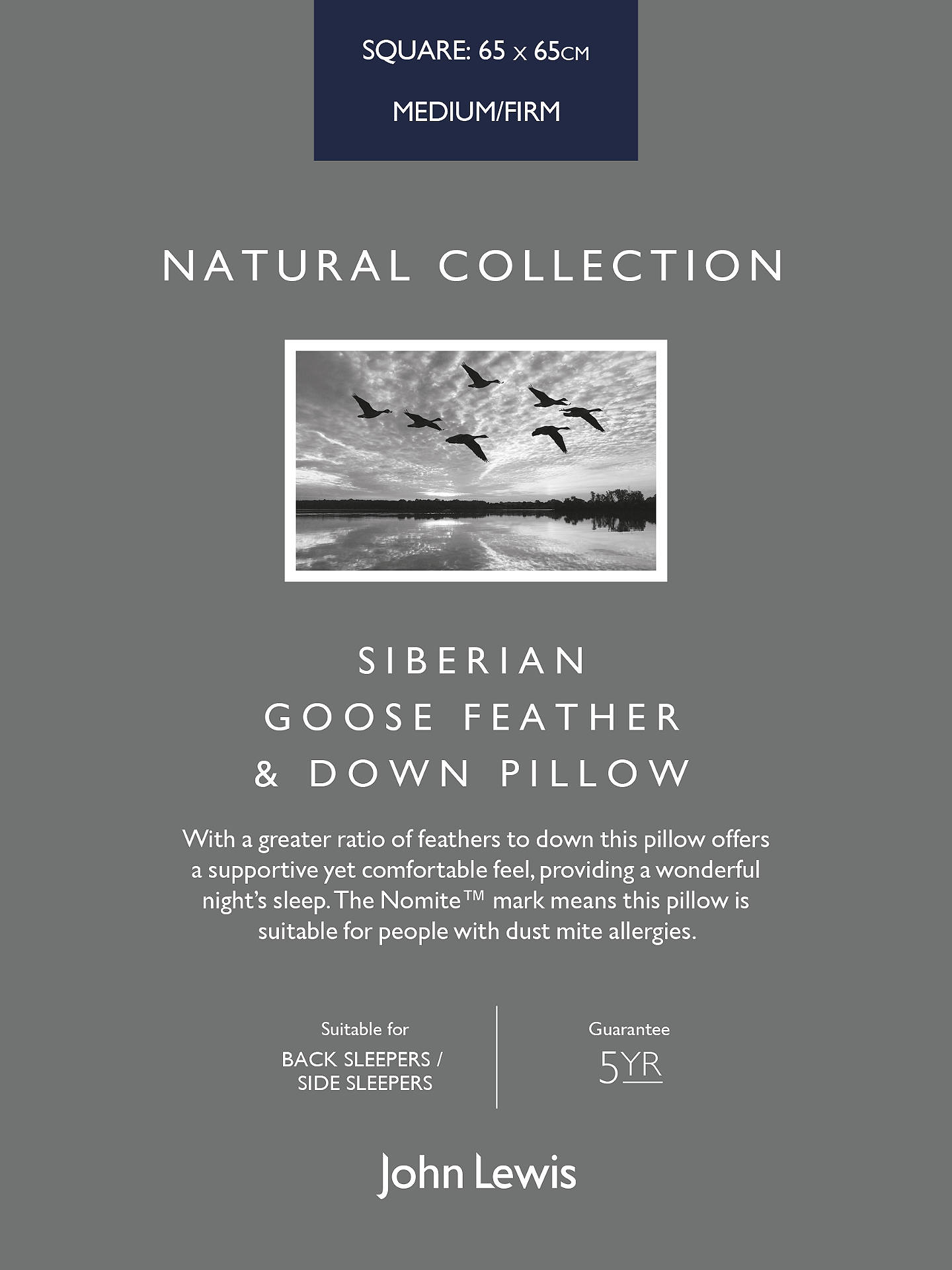 BuyJohn Lewis & Partners Natural Collection Siberian Goose Feather and Down Square Pillow, Medium/Firm Online at johnlewis.com