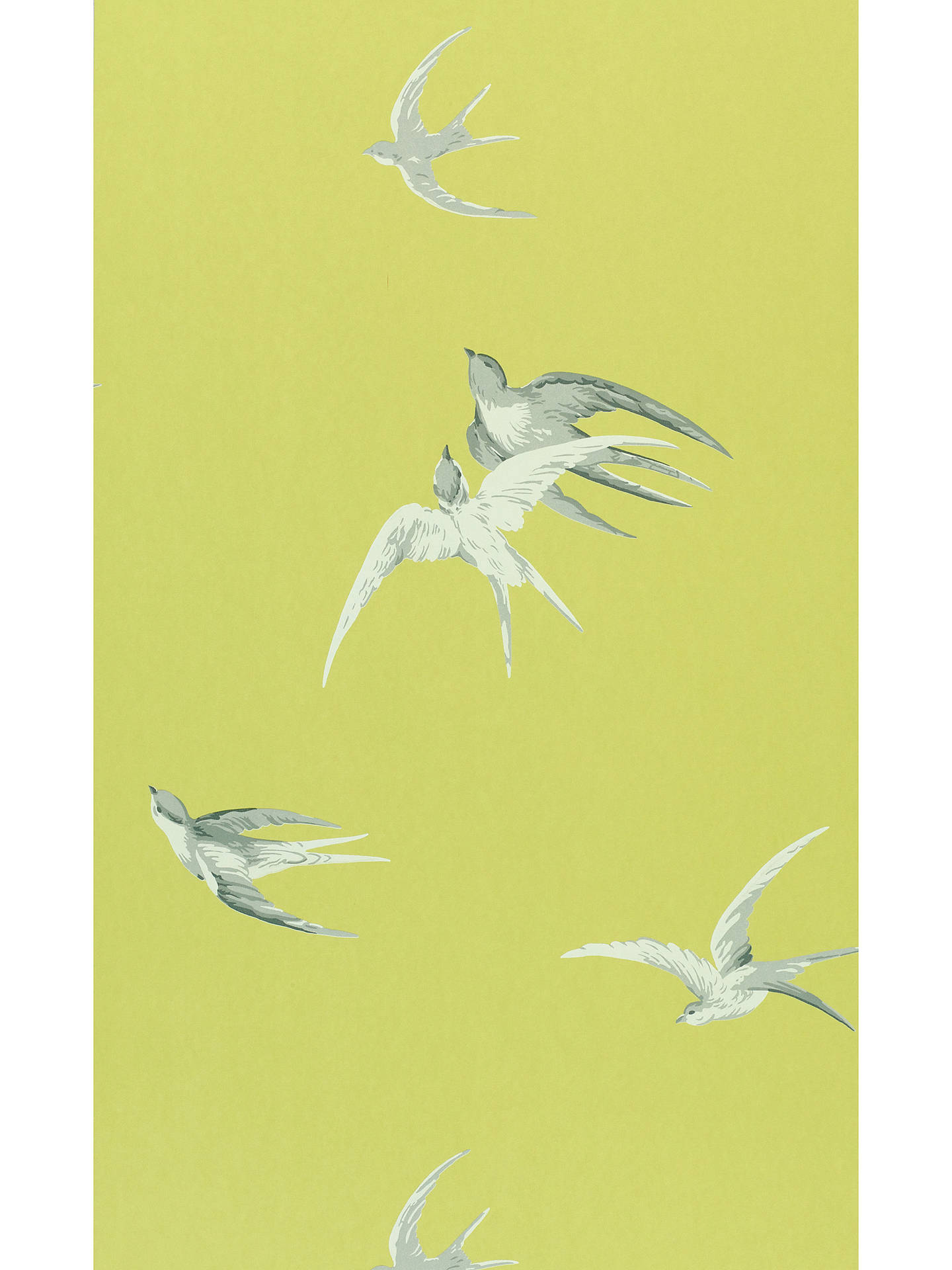 Buy Sanderson Swallows Wallpaper, Lime, DVIWSW101 Online at johnlewis.com