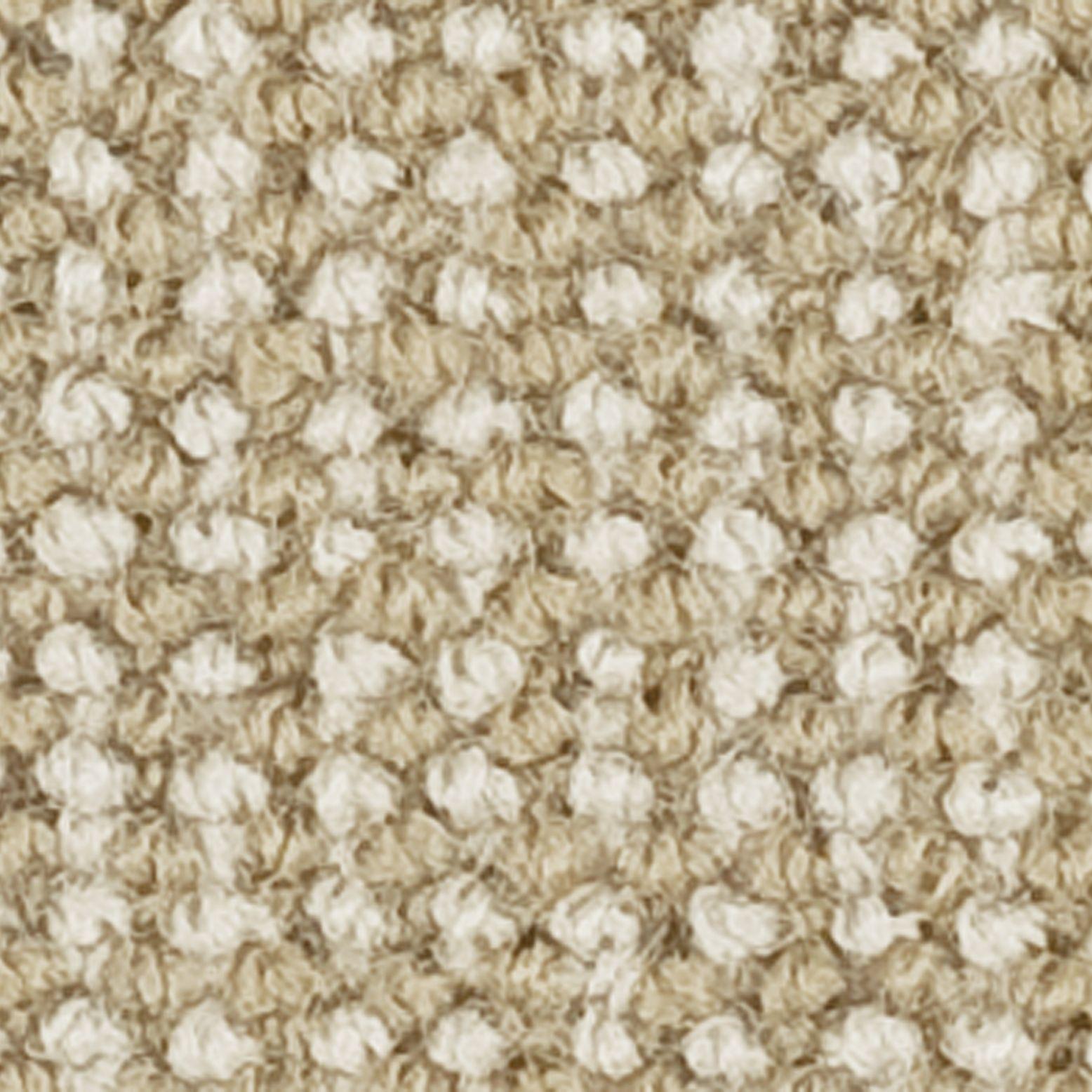 Ulster Carpets Ulster Open Spaces Queenstown Loop Carpet