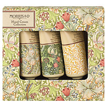 Buy Heathcote & Ivory Morris & Co Golden Lily Hand Cream Collection Gift Set Online at johnlewis.com