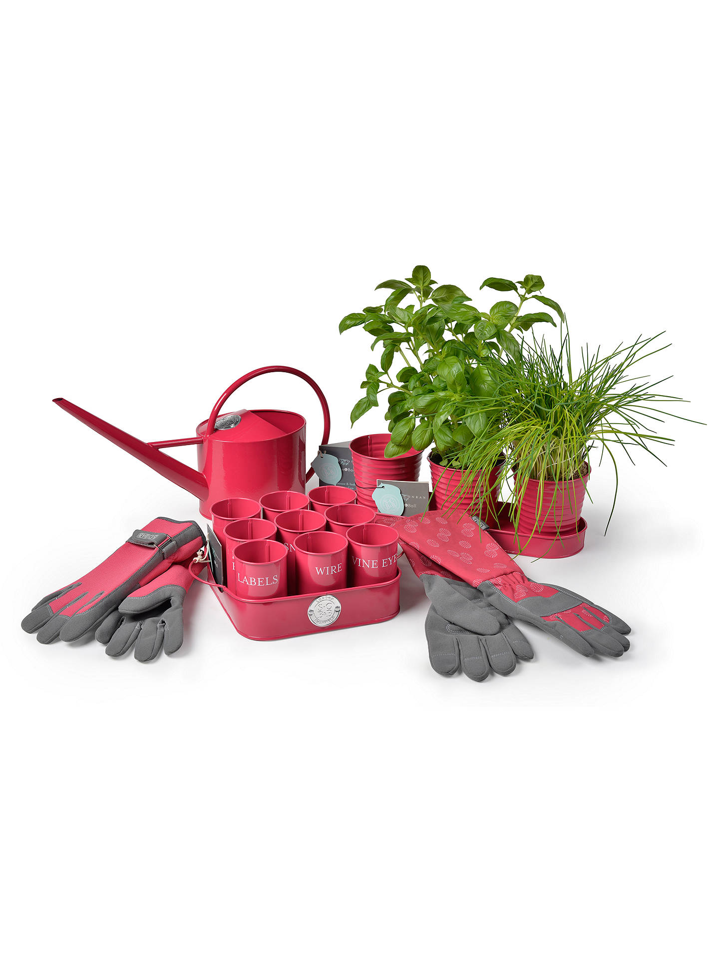 BuySophie Conran for Burgon & Ball Herb Pots, Raspberry Online at johnlewis.com