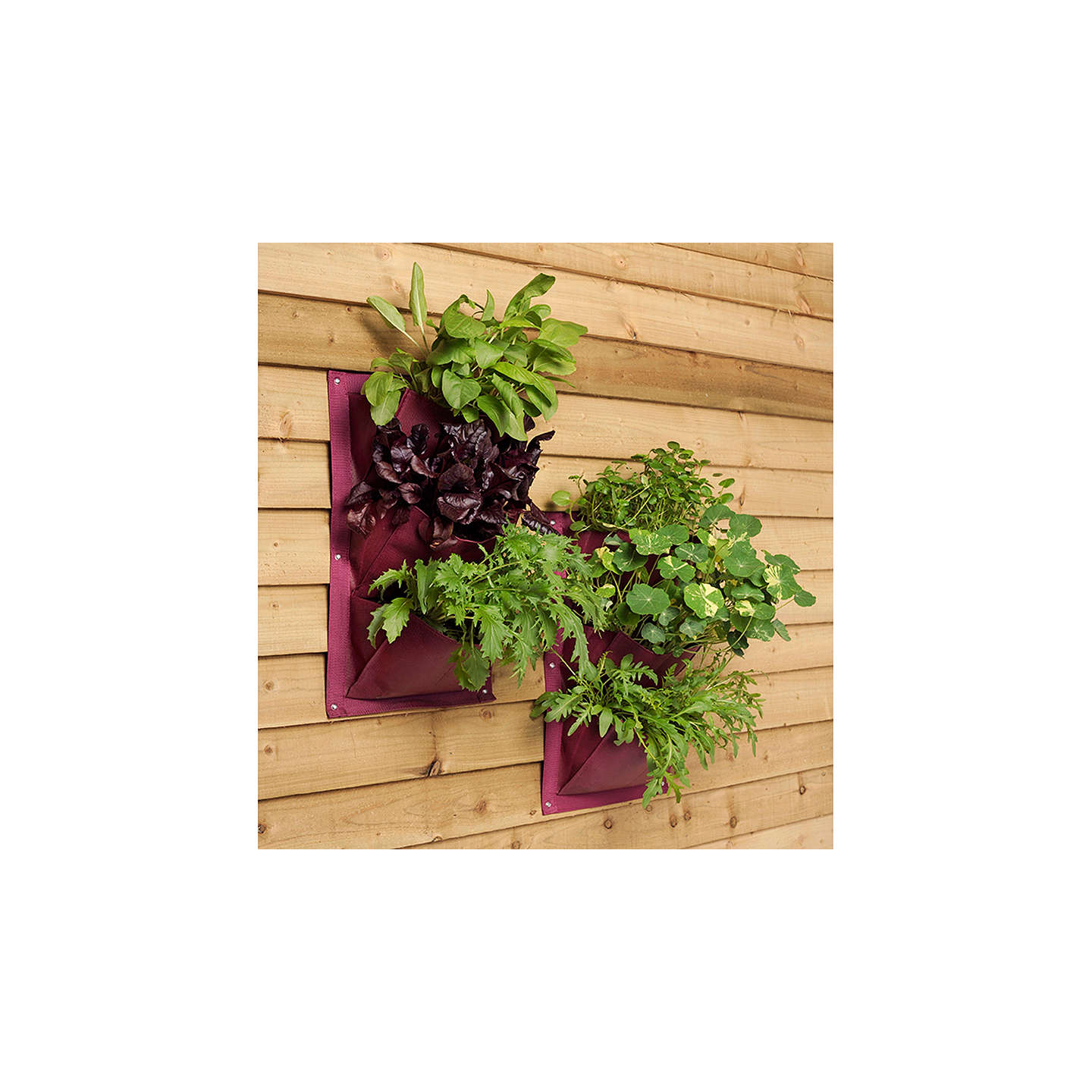 BuyBurgon & Ball Vertical Wall Planter, Aubergine Online at johnlewis.com