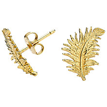 Buy Dower & Hall Small 18ct Gold Vermeil Feather Stud Earrings Online at johnlewis.com