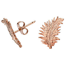 Buy Dower & Hall Small 18ct Rose Gold Vermeil Feather Stud Earrings Online at johnlewis.com