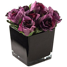 Buy Peony Artificial Roses in Black Cube, Large Online at johnlewis.com
