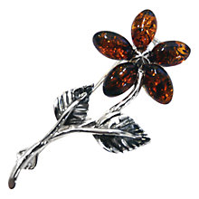 Buy Goldmajor Amber and Sterling Silver Flower Brooch, Amber Online at johnlewis.com