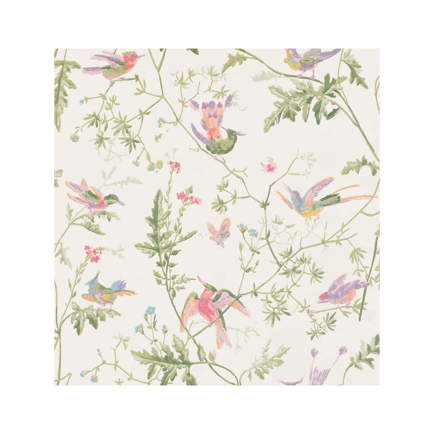 BuyCole & Son Hummingbirds Wallpaper, 100/14067 Online at johnlewis.com