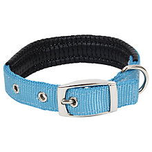 Buy Fred & Ginger Nylon Dog Collar, 35cm Online at johnlewis.com