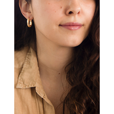 IBB 9ct Yellow Gold Polished Oval Creole Earrings, Gold