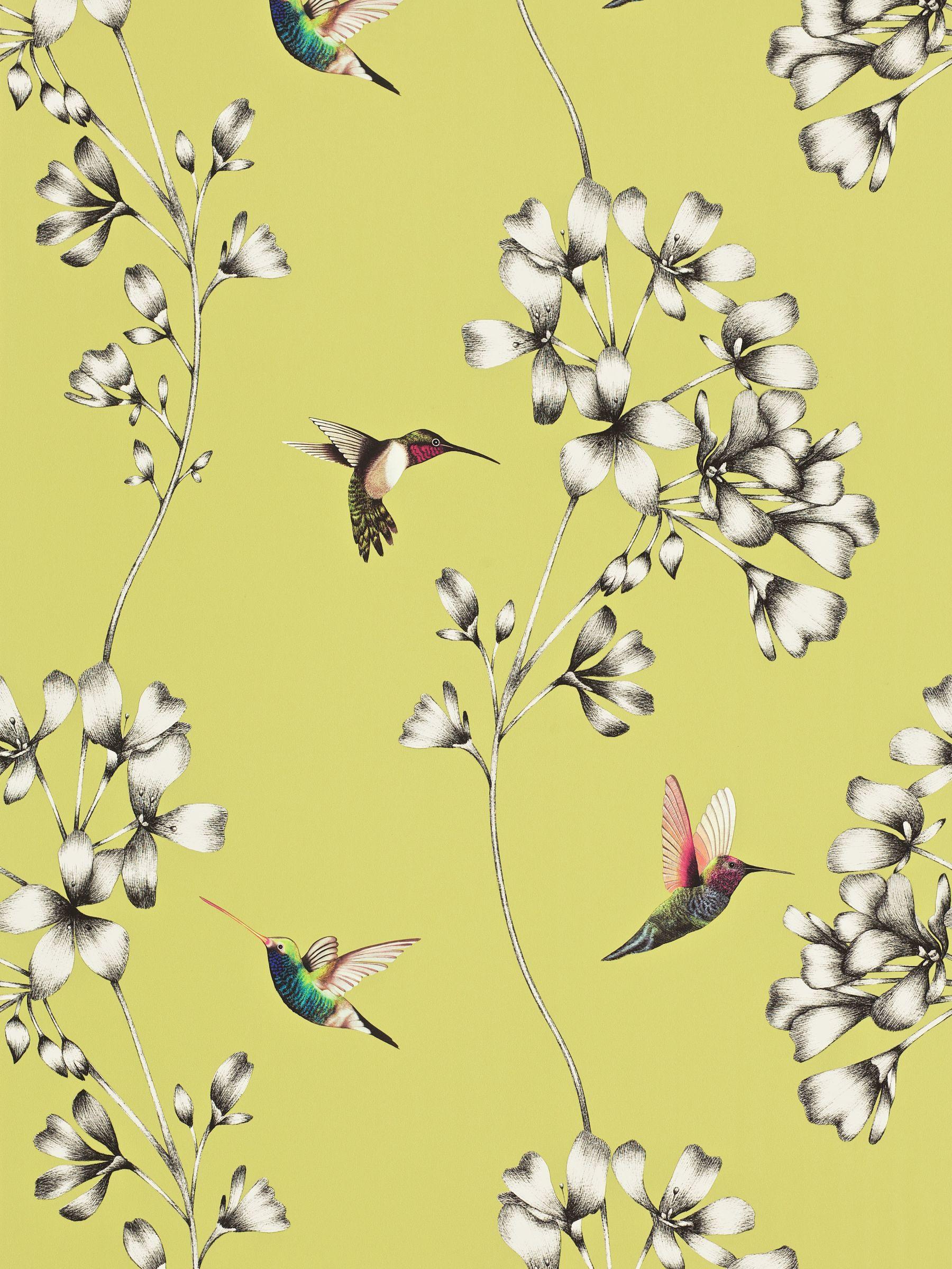 Harlequin Harlequin Amazilia Wallpaper