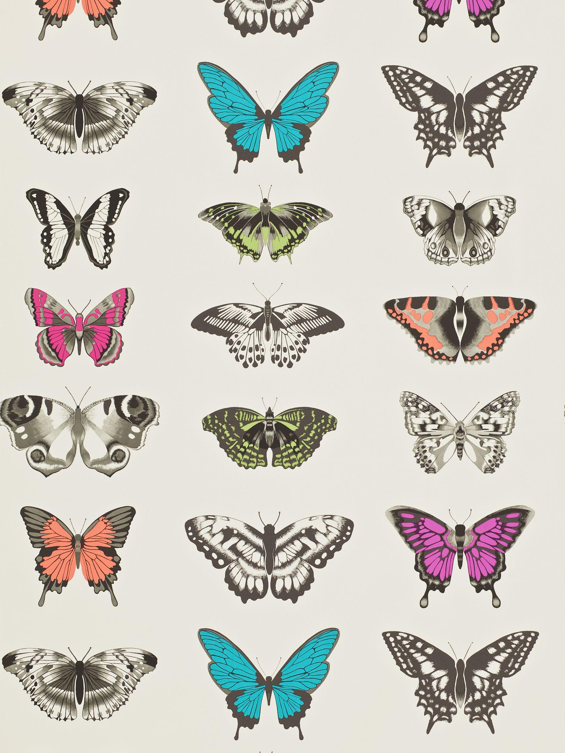 Harlequin Harlequin Papilio Wallpaper
