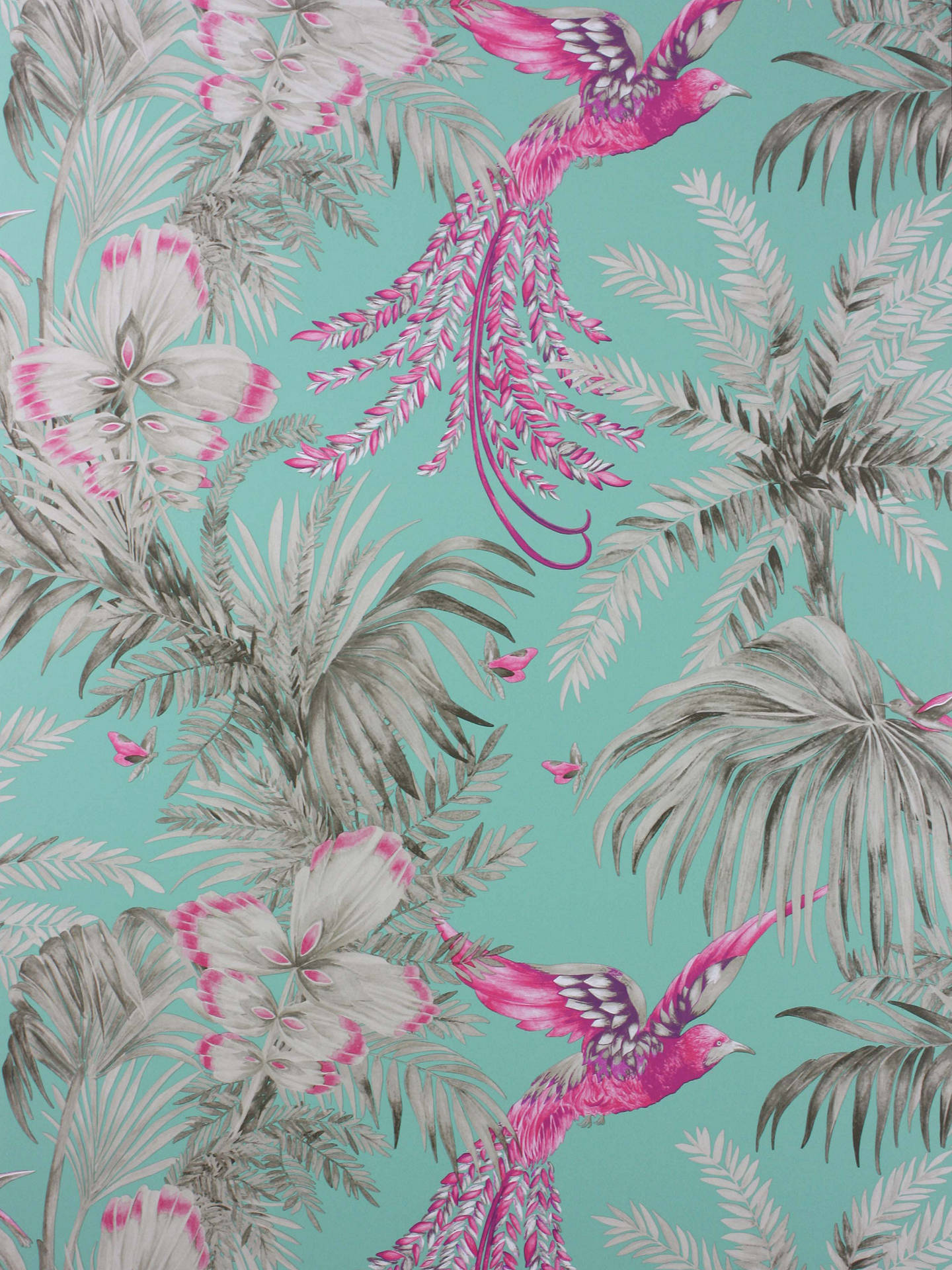 Buy Matthew Williamson Bird of Paradise Wallpaper, Fuscia, W6655-07 Online at johnlewis.com