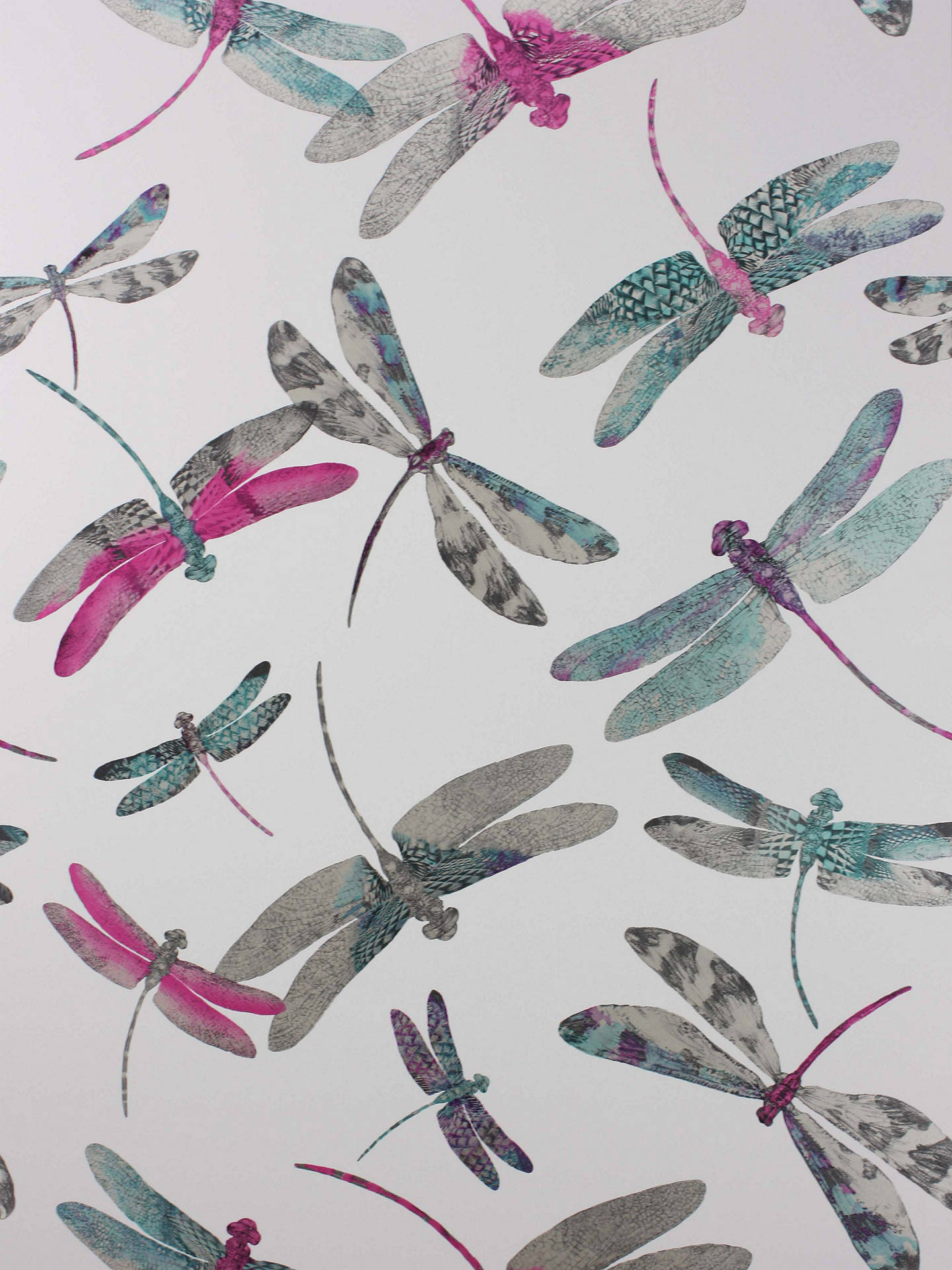 Buy Matthew Williamson Dragonfly Dance Wallpaper, Fuchsia, W6650-05 Online at johnlewis.com