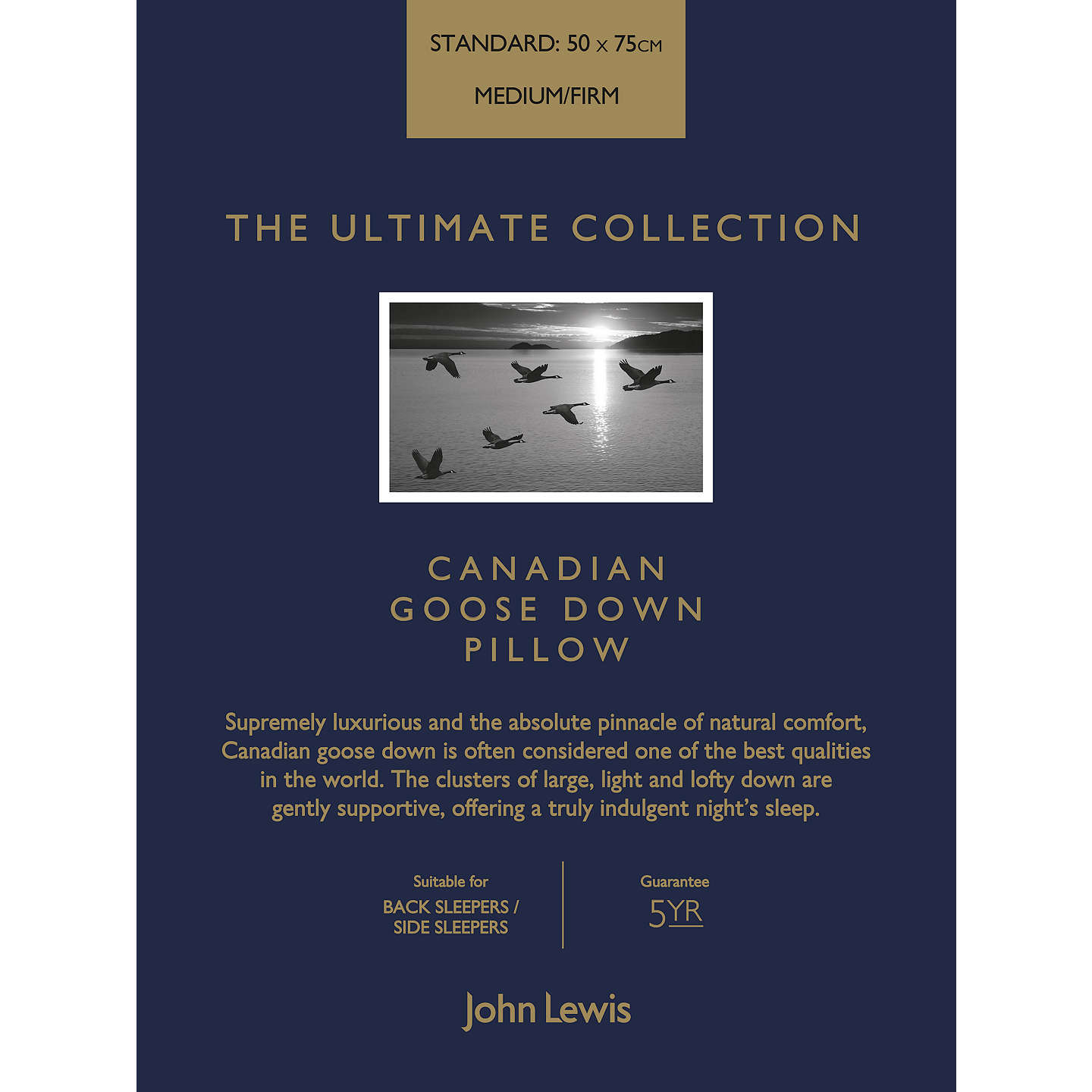 BuyJohn Lewis The Ultimate Collection Canadian Goose Down Standard Pillow, Medium/Firm Online at johnlewis.com