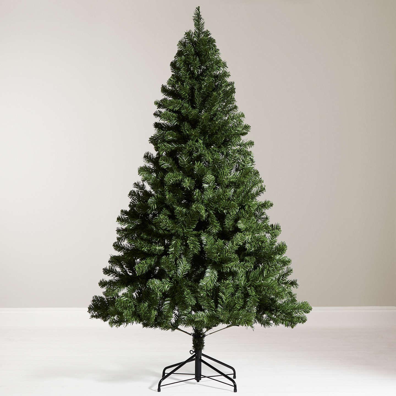 Waitrose Christmas Trees