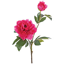 Buy Floralsilk Peony Spray, Fuchsia Online at johnlewis.com