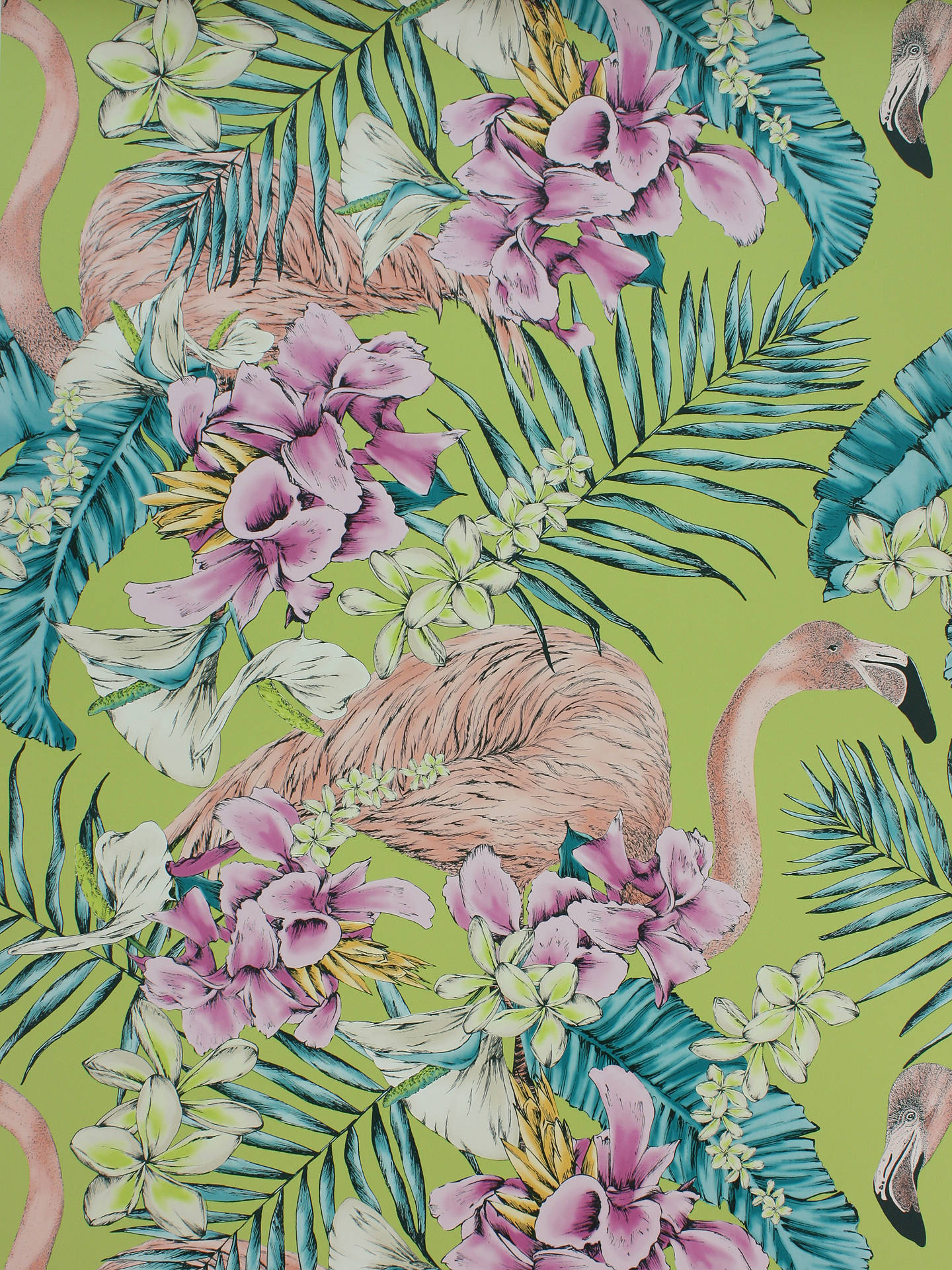 Buy Matthew Williamson Flamingo Club Wallpaper, W6800-02 Online at johnlewis.com