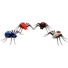 Buy Little Live Pets Spider Single Pack, Assorted Online at johnlewis.com