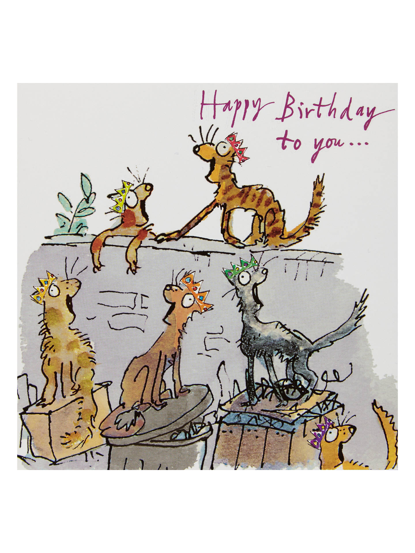 BuyWoodmansterne Cats Singing In An Alley Birthday Card Online At Johnlewis