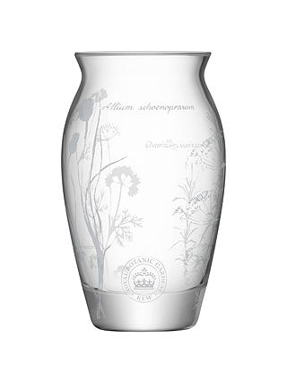 Buy Kew Royal Botanic Gardens Single Bud Vase Online at johnlewis.com
