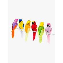 Buy Talking Tables Tropical Birds Clip On Decorations, Pack of 6 Online at johnlewis.com
