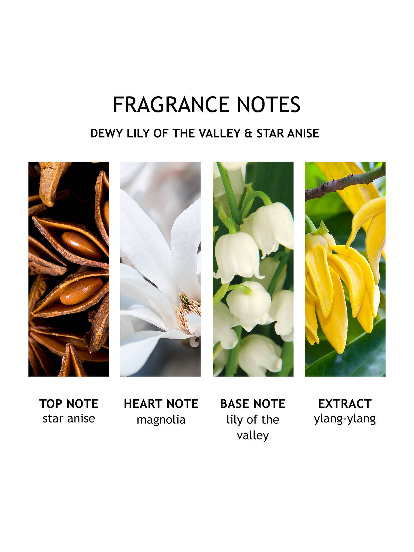 BuyMolton Brown Dewy Lily of the Valley And Star Anise Aroma Reeds Online at johnlewis.com