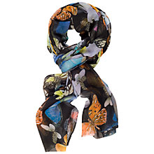 Buy Chesca Butterfly Print Chiffon Scarf, Black/Multi Online at johnlewis.com
