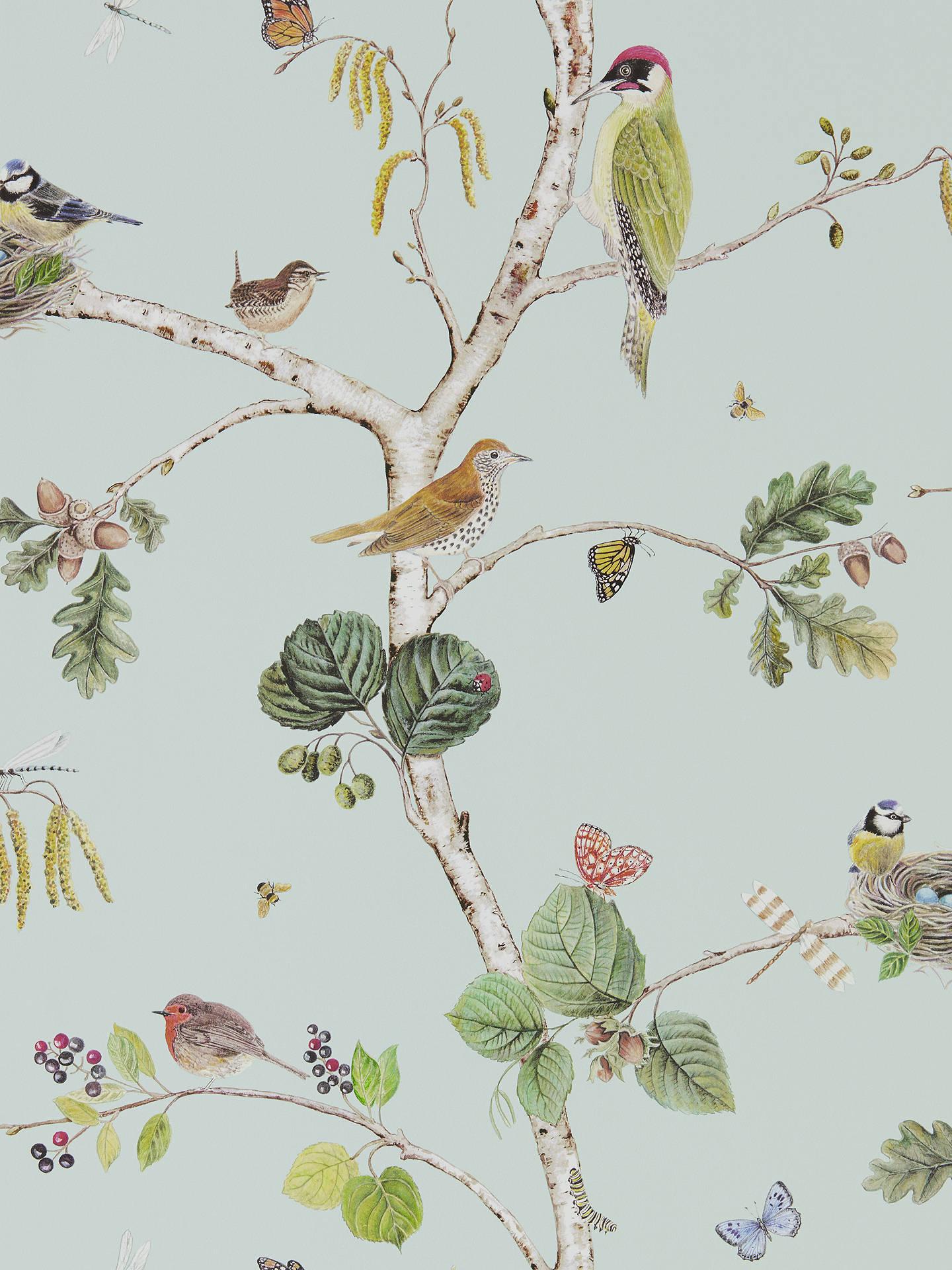 BuySanderson Woodland Chorus Wallpaper Sky Blue Multi DWOW215706 Online At Johnlewis
