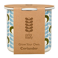 Buy Orla Kiely Grow Your Own Coriander Gardening Gift Online at johnlewis.com