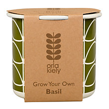Buy Orla Kiely Grow Your Own Basil Gardening Gift Online at johnlewis.com