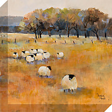 Buy Debbie Neill - Sheep Gathering Detail II Canvas Print, 40 x 40cm Online at johnlewis.com