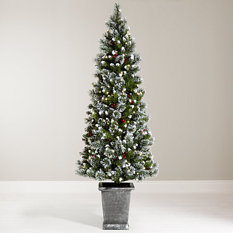 Buy John Lewis Chamonix 6ft Pre Lit Potted Christmas Tree Online At  Johnlewis.com