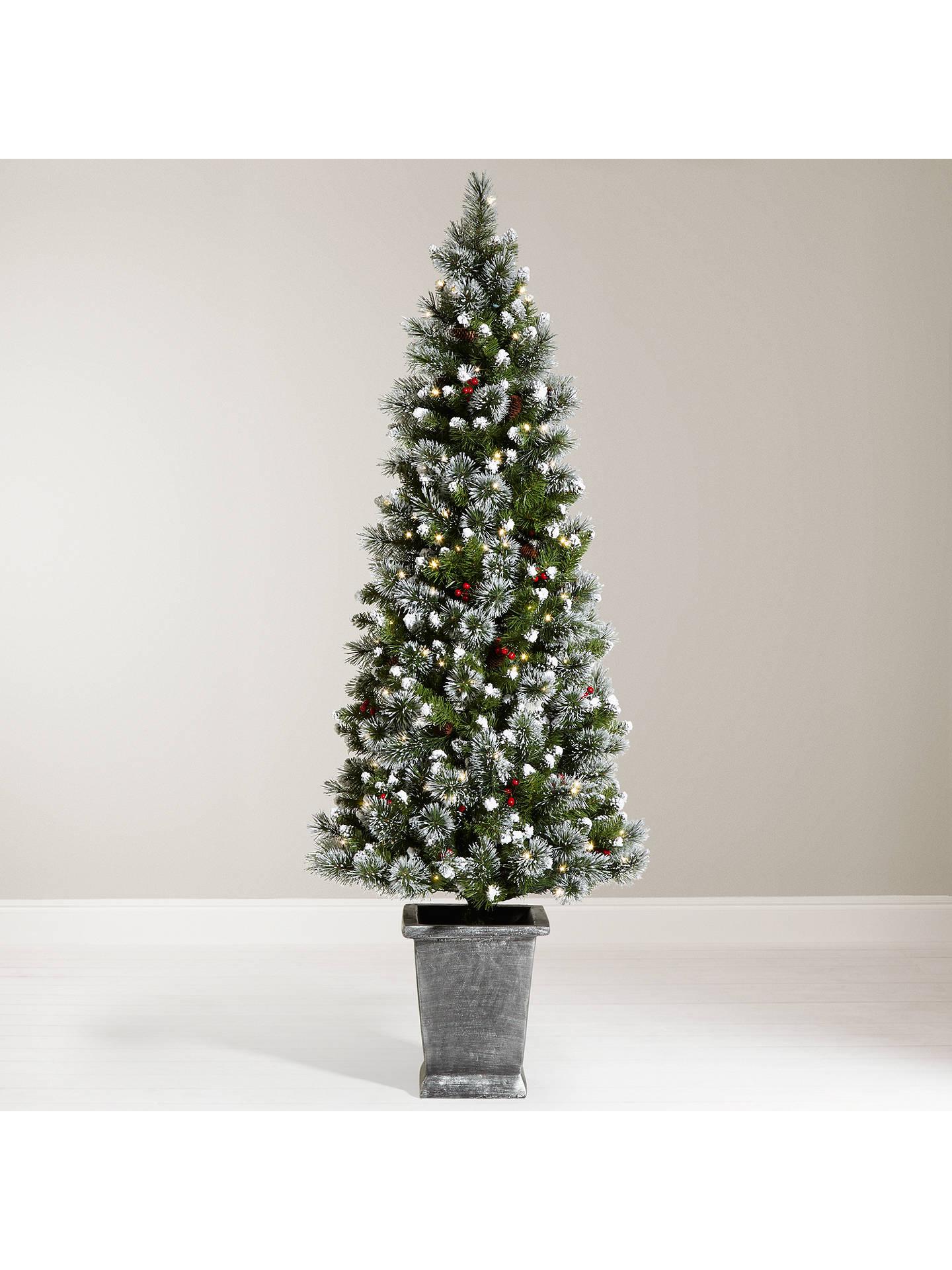 BuyJohn Lewis Chamonix 6ft Pre-Lit Potted Christmas Tree Online at johnlewis.com ...
