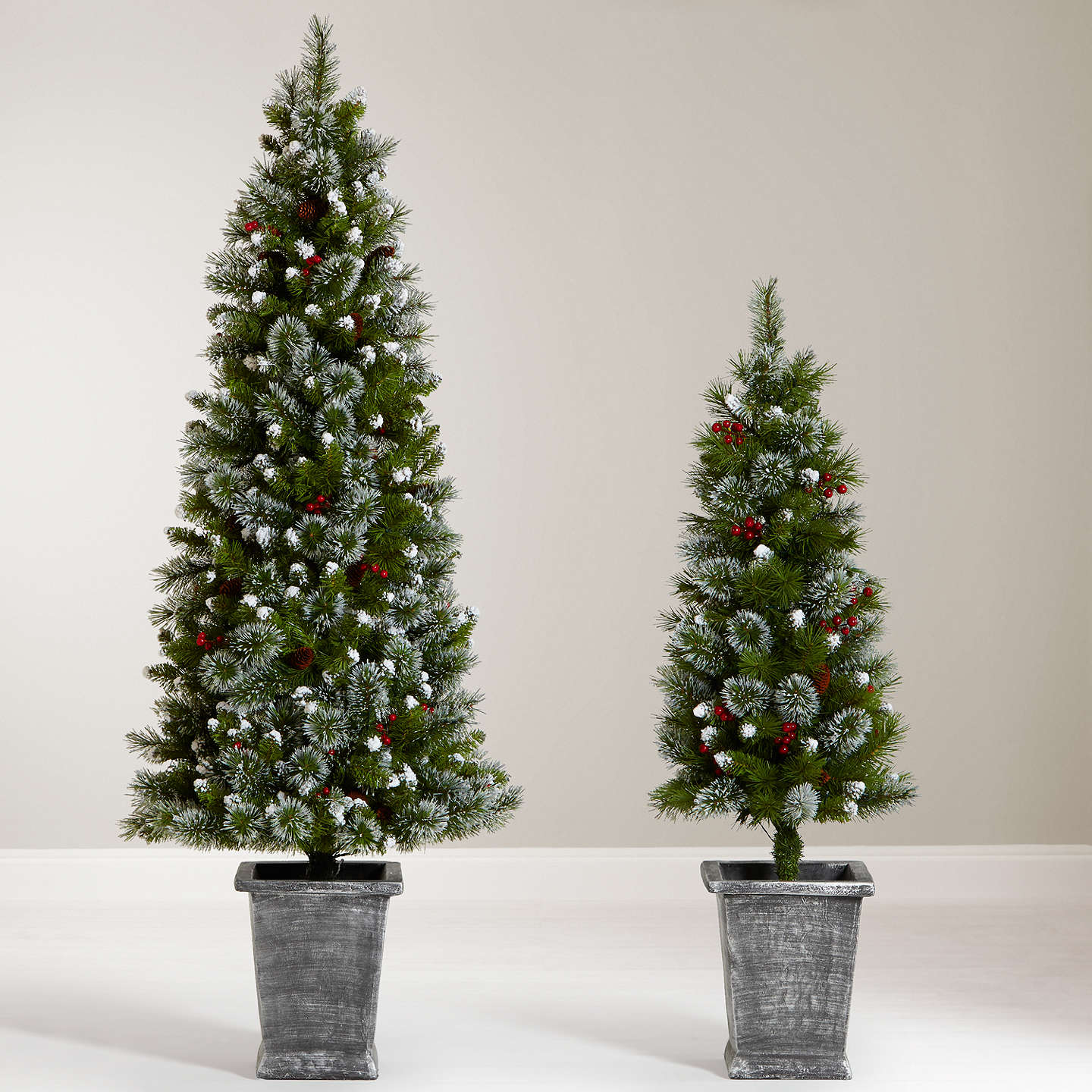 Buyjohn Lewis Chamonix 6Ft Pre Lit Potted Christmas Tree Online At