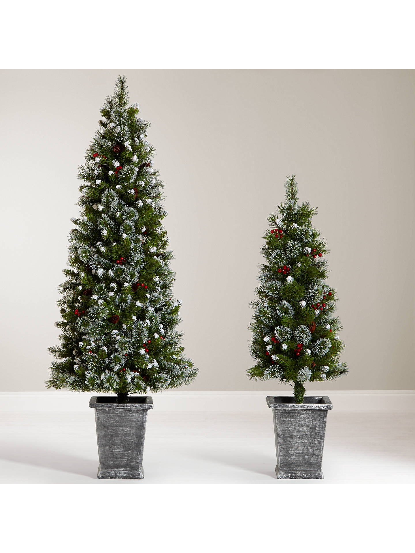 John Lewis & Partners Chamonix 6ft Pre-Lit Potted Christmas Tree at John Lewis & Partners