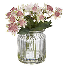 Buy Artificial Peony Astrantia In Jam Jar Online at johnlewis.com