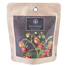 Buy Kew Royal Botanic Gardens Grow Your Own Strawberry Plant Pot Online at johnlewis.com
