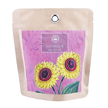 Buy Kew Royal Botanic Gardens Pocket Sunflower Online at johnlewis.com