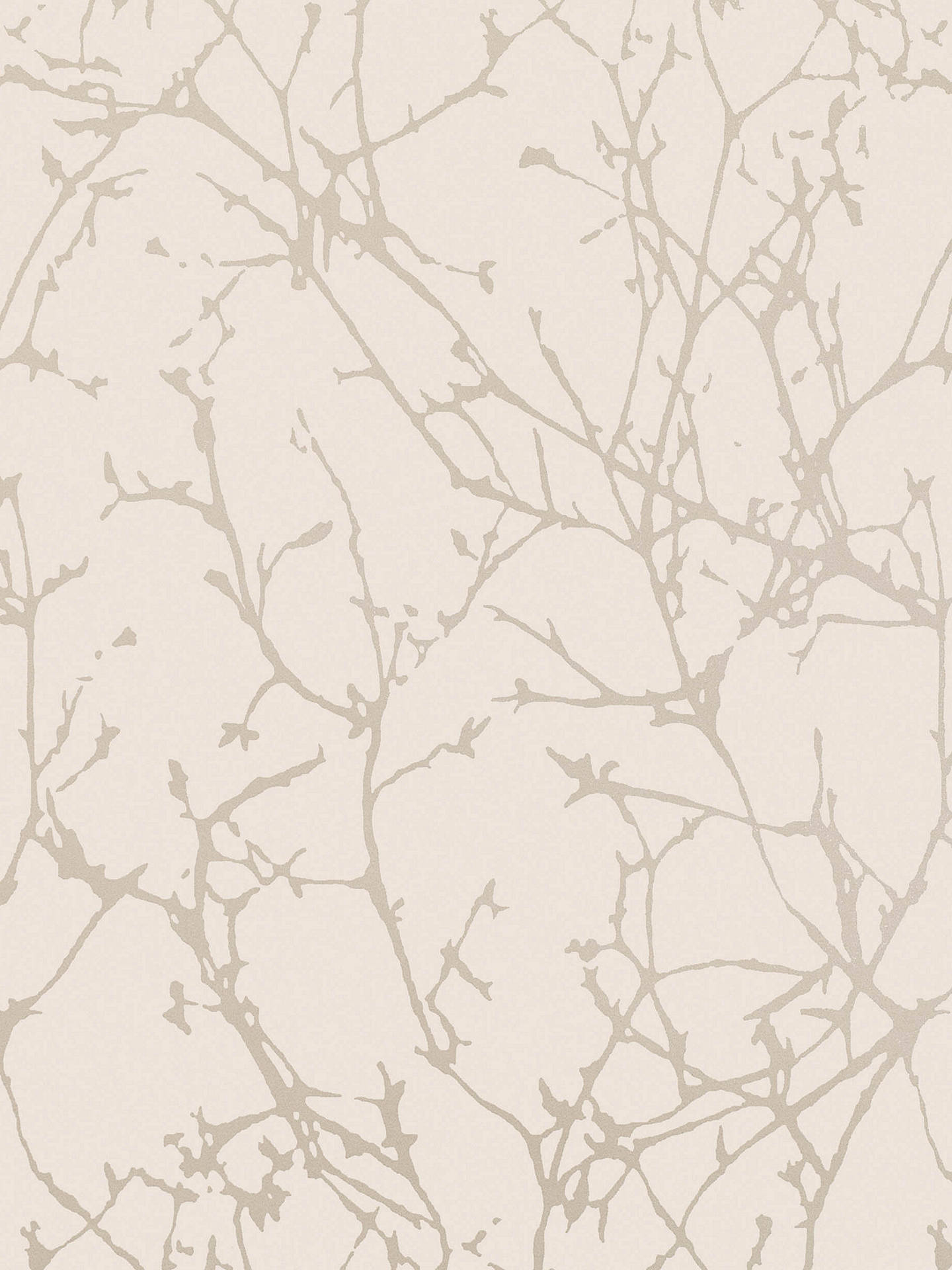 Buy Romo Arbor Paste the Wall Wallpaper, Silver Birch W396/04 Online at johnlewis.com
